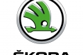 SKODA 3D Standard Brand Mark Medium_50mm_CMYK